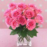 13-roze-ruza