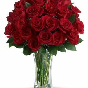 rose1256